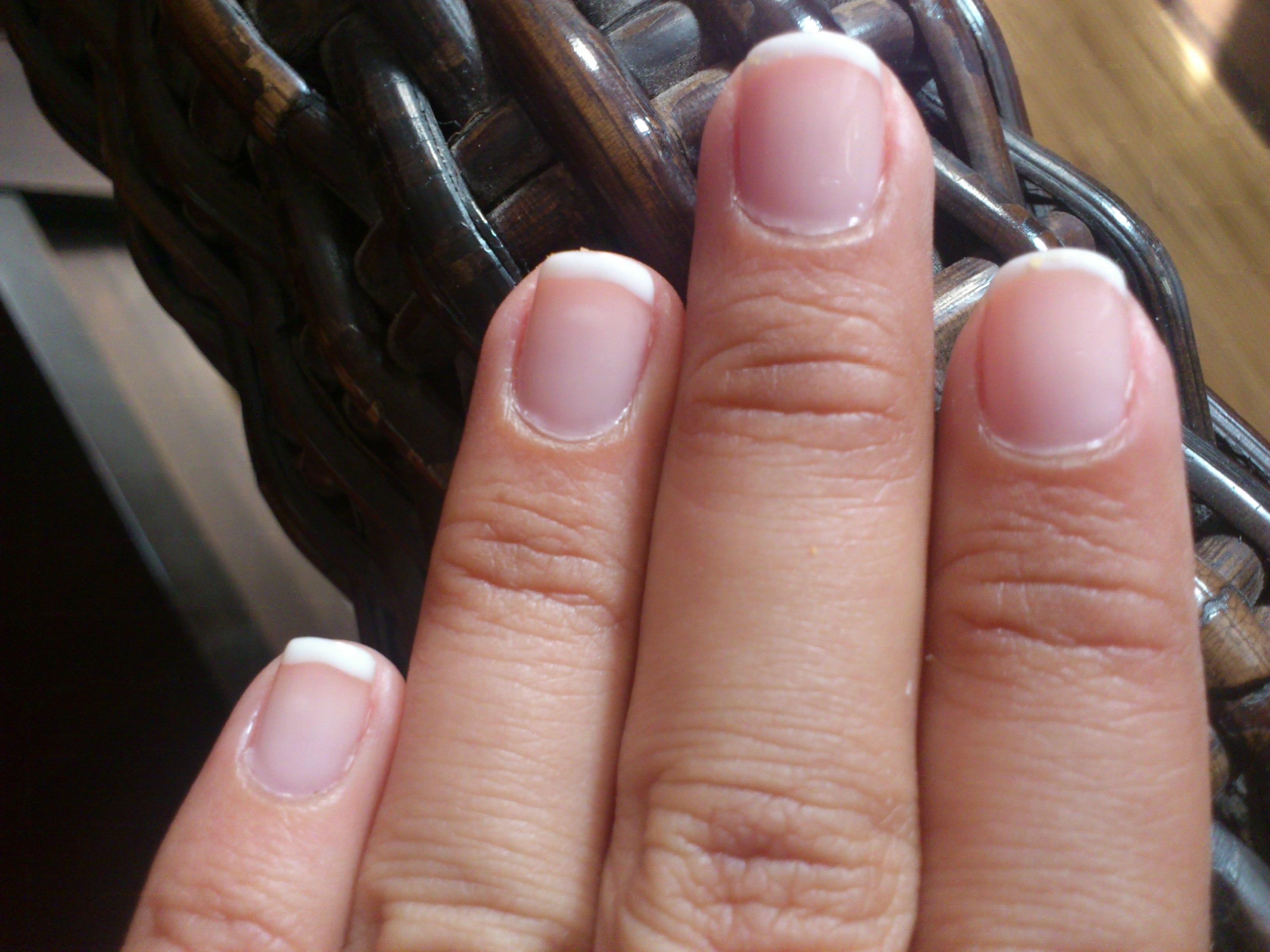 Image Result For Rosa Opi Gel